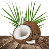 Close-up of a coconuts on white background. Close-up of a fresh tasty coconuts. Isolated on white background Royalty Free Stock Images