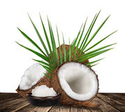 Close-up of a coconuts on white background Royalty Free Stock Photos