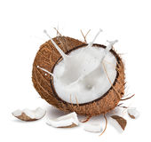 Close-up of a coconuts on white background Stock Photos