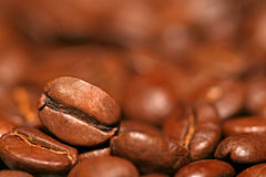 Close up of coffee bean on coffee's background Stock Images