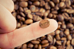 Close-up of coffee bean on human finger Royalty Free Stock Image