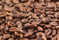 Close up of coffee beans. Close up of a lot of coffee beans Stock Photo