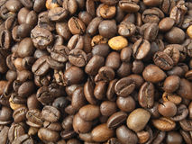 Close up of the coffee beans. Close up of the fresh, brown coffee beans stock image