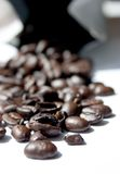 Close-up of coffee beans Royalty Free Stock Photography