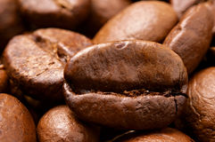 Close-up of Coffee Beans. Close-up of Roasted Coffee Beans Royalty Free Stock Image