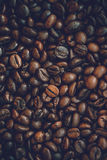 Close up coffee beans Stock Image