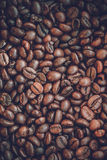 Close up coffee beans Stock Images