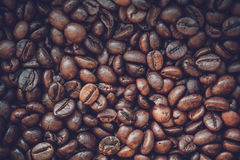 Close up coffee beans Royalty Free Stock Images