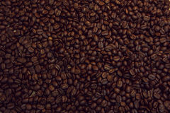 Close-up of coffee beans background.,Dyed red. Stock Photos