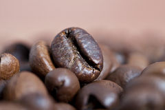 Close up on coffee beans Stock Images