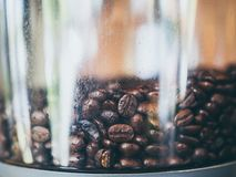 Coffee beans in electric coffee grinder stock photos
