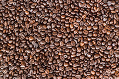 Close up coffee beans Stock Photography