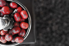 Close up of coffee beans ripening in coffee grinder Royalty Free Stock Photo