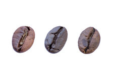 Close up coffee beans. Royalty Free Stock Images