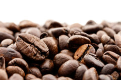 Close up coffee beans on white background Stock Image