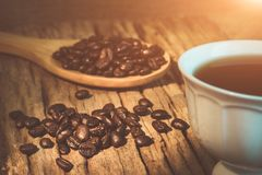 Coffee beans on wooden spoon. Close up of coffee beans on wooden sheet and the white coffee cup Stock Photography