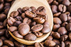 Close up of coffee beans on wooden spoon Royalty Free Stock Image