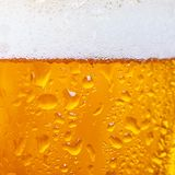 Close up of cold beer in a glass. Beer background stock photos