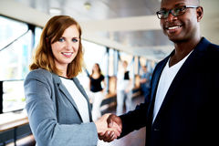 Close up of colleagues shaking hands Royalty Free Stock Photo