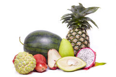 Close up collection exotic and tropic fruits Stock Image