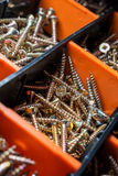 Close Up Of A Collection Of Screws In Cells 2 Royalty Free Stock Photos