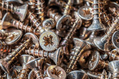 Close Up Of A Collection Of Screws 1 Stock Photography