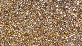 Many small shells, stones, broken glass, textured, close-up, format-filling background Pebble beach in Andalusia, Cadiz. Close-up of a collection of various Royalty Free Stock Photography