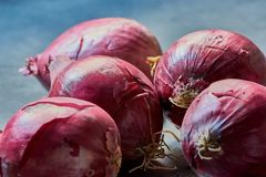 Close up color photo of red onions. Group of fresh red onions on a gray kitchen desk royalty free stock photo