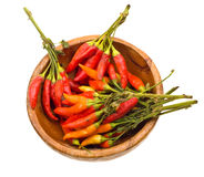 Close-up color wild hot paprika on a wooden plate. Royalty Free Stock Image