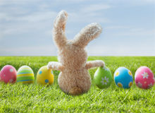 Close up of colored easter eggs and bunny on grass Royalty Free Stock Photos