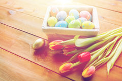 Close up of colored easter eggs and flowers Royalty Free Stock Image