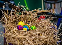 Colorful Easter Eggs in Bike Basket stock image
