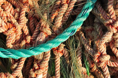 Close-up of colorful frayed nylon lobster men rope Stock Photo
