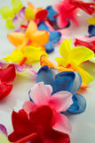 Close-up colorful Hawaiian lei with bright flowers on white background. Close-up colorful Hawaiian lei with bright flowers on white stock photography