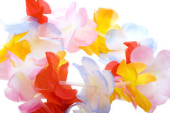 Close-up colorful Hawaiian lei isolated on white Stock Image