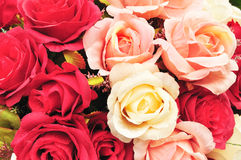 Close up colorful imitation or artificial rose flower background Royalty Free Stock Photo