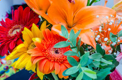 Close up with a colorful mix of flowers. Close up with a colorful mix of spring flowers Royalty Free Stock Photos