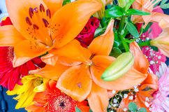 Close up with a colorful mix of flowers. Close up with a colorful mix of spring flowers Royalty Free Stock Image