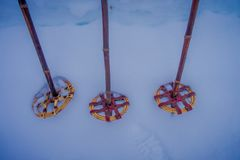 Close up of colorful pair of ski and hiking poles over the snow in Norway.  Stock Photography