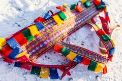 Close up of colorful reindeer rig. Belt used for pulling sledge Stock Photos