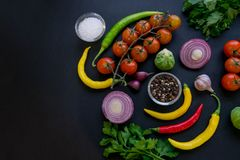 Traditional Latin American mexican Tomato sauce salsa, chilean chancho en piedra in stone mortar and ingredients stock photos