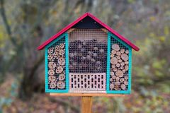Close up of a colorful wood insect house hotel structure created to provide shelter for insects like bees to prevent extinction stock photo