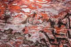 Close-up colorido da formação do arenito em um de muitos túmulos em PETRA (Jordânia) Fotografia de Stock Royalty Free