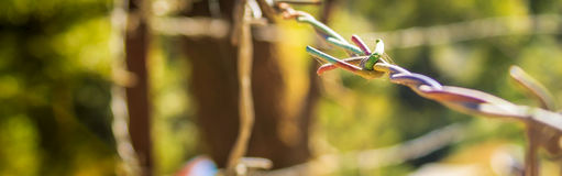 Close up of colourful barb wire Stock Photography