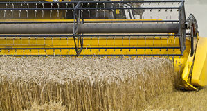 Close up of a combine harvester at work Stock Photo