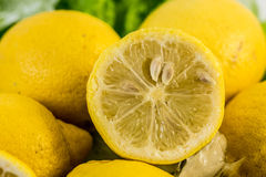Close up composition of fresh cut lemons Royalty Free Stock Photography