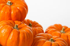 Close up composition of pumpkins Stock Image