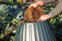 Close up of compost bin being filled. Stock Images