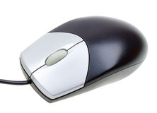 Close-up computer mouse on white Stock Image