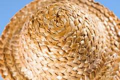 Close up of a coneflower against blue sky Stock Photos